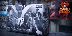 Premium Bandai 1/144 RG Destiny Gundam Deactive Mode