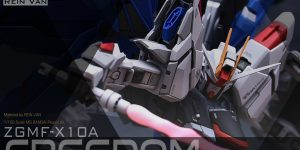 PRE ORDER: Infinite Dimension 1/100 MG Freedom Resin Conversion Kit (Original Cast)