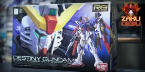 Bandai 1/144 RG Destiny Gundam #11