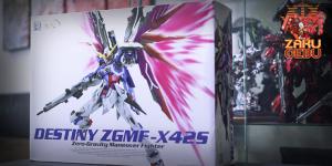 Dragon Momoko 1/100 MG Destiny ZGMF-X42S