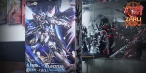 Dragon Momoko 1/100 MG Strike Freedom