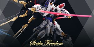PRE ORDER: Fortune Meow's Studio 1/100 MG Strike Freedom Gundam Resin Conversion Kit (Original Cast)